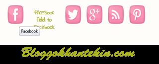 Sosyal Medya Profil Butonları