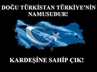 Müslümanlar Ölüyor, Doğu Türkistan