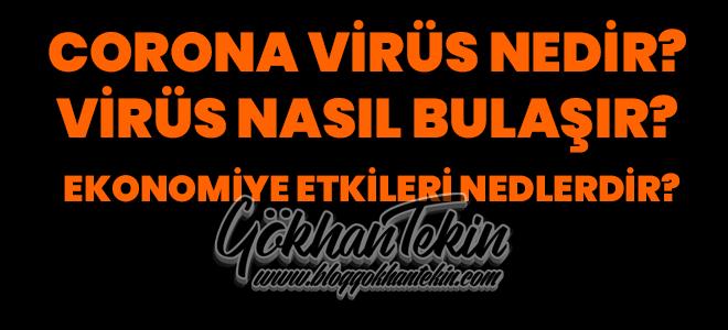 corona-virüsü